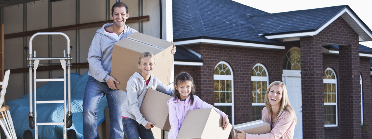 removals central coast
